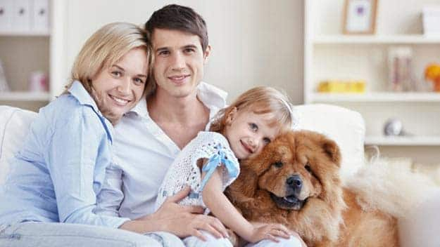 Wills & Trusts dog-young-family Direct Wills Sandhurst